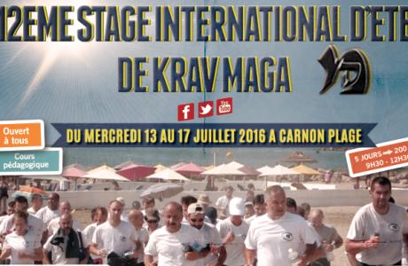 Stage d'été 2016