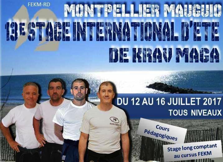 Stages Krav Maga